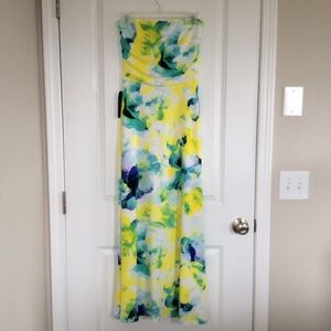 *NWT* The Limited Strapless Maxi Dress